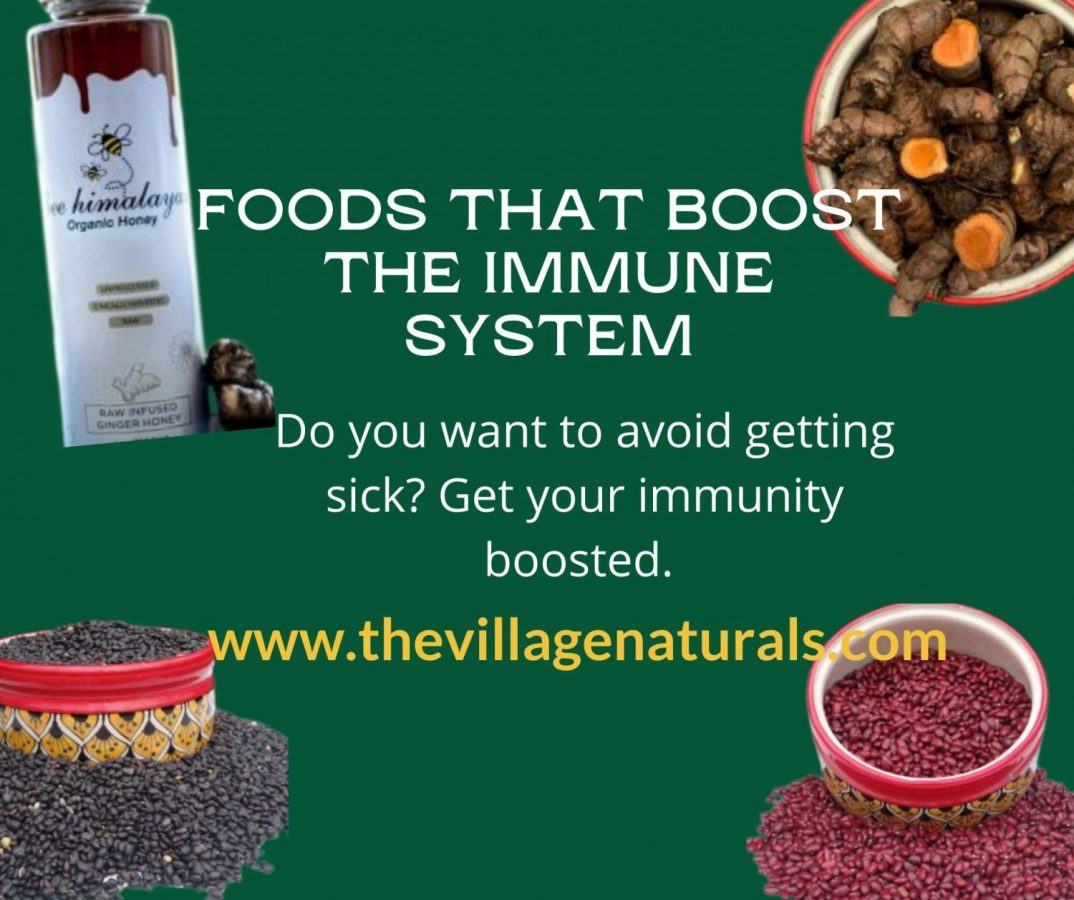 Foods That Boost the Immune System - The Village Naturals