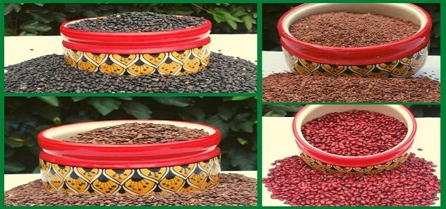 The Village Naturals provides you with the best Natural Organic Food Grains and pahadi pulses (Daal) Sourced from High Rises of Uttarakhand.